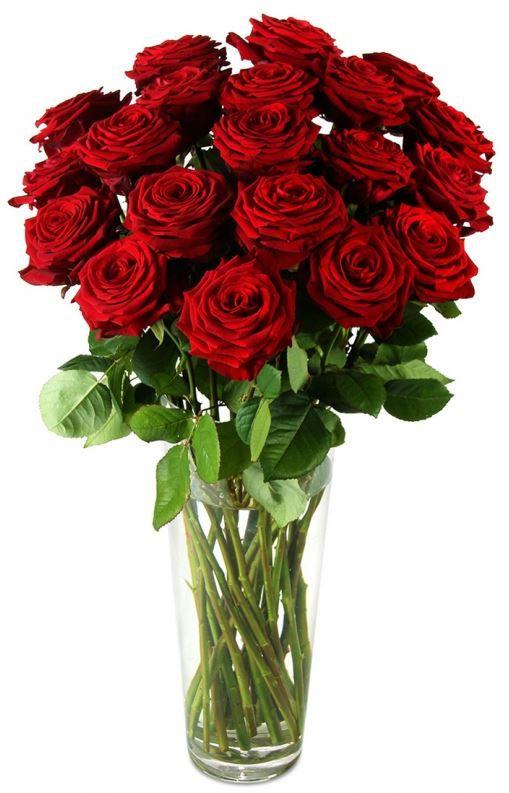 Naomi Miflora Blumenstrauß   17 Red Naomi Rosen nur 19,89€   Update!