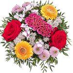 Lidl-Blumen: 15% Gutschein für Blumen – ohne Mindestbestellwert