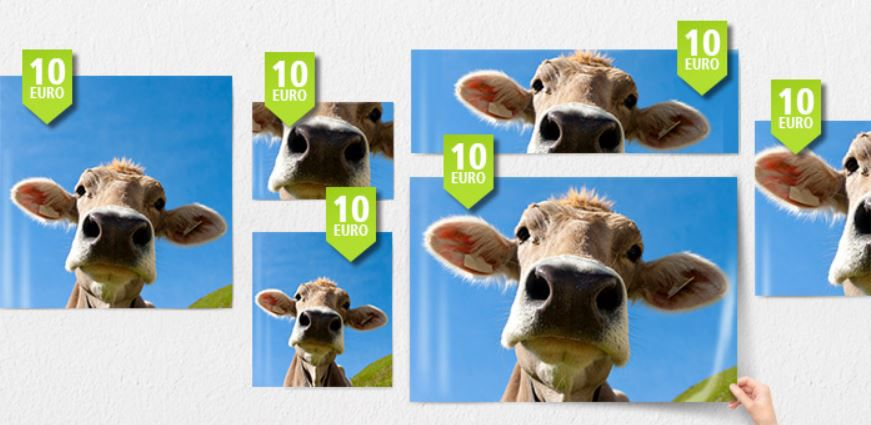 Posterxxl PosterXXL neuer 10€ Gutschein ohne MBW + VSK z.B Poster 100x50cm nur 5,99€ inkl. Versand