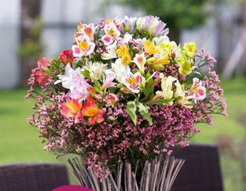 strauss Blumenstrauss Lyra für 19,90€   update!