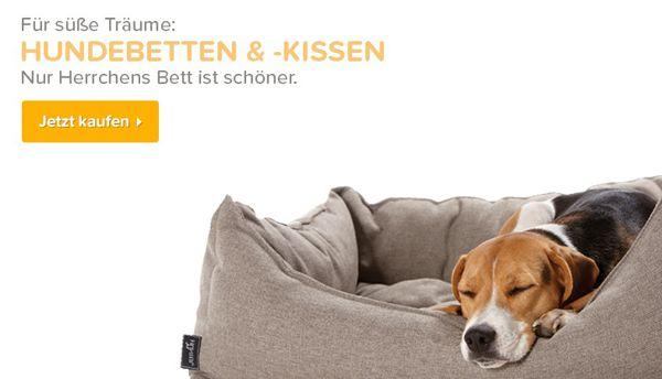 Petobel Gutschein 50% Gutschein für Petobel mit 59€ MBW + Sale mit bis zu 50% Rabatt   günstiges Tierfutter, Zubehör und mehr