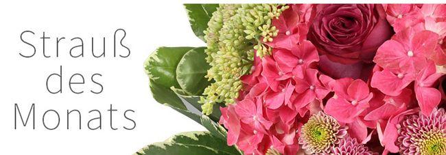 Miflora Top! Wahnsinnige 50% Rabatt auf ALLES bei Miflora   nur bis 22 Uhr!