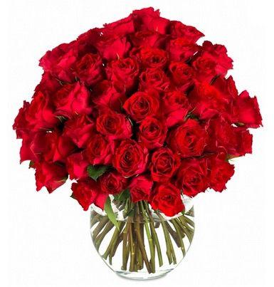 XXL Rosen 50 XXL Rosen für nur 45€ bei Miflora dank 55% Gutschein