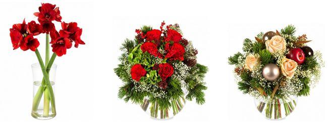 Miflora Blumen 50% Rabatt auf ALLES bei Miflora   jede 2. Blume geschenkt bekommen