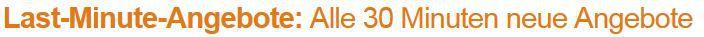 Silit 3038622211   Ovaler Bräter mit Deckel bei den ersten 129 Amazon Blitzangeboten heute