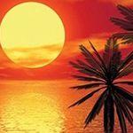 Fototapeten um 80% reduziert bei Zengoes