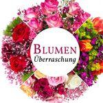 Miflora Überraschungs Rosen Blumenstrauß für 14,90€