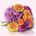 Miflora: 30% Rabatt auf nicht reduzierte Blumensträuße – TOP!