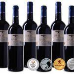 6 Flaschen 2011er Ursa Maior – Rioja DOCa Reserva für 31,89€