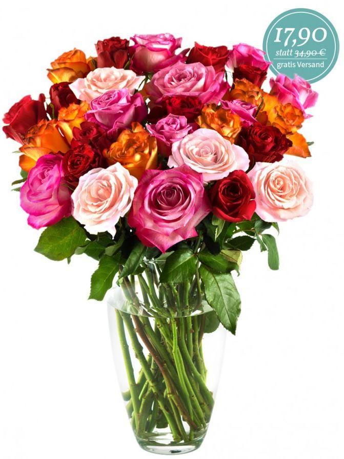 Rosen Miflora: 30 Rainbow Rosen kosten nur 17,90€ inkl. Verand