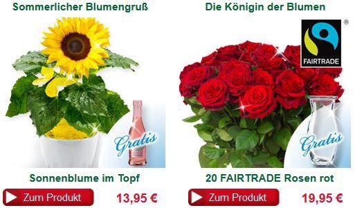 Blumen Angebot