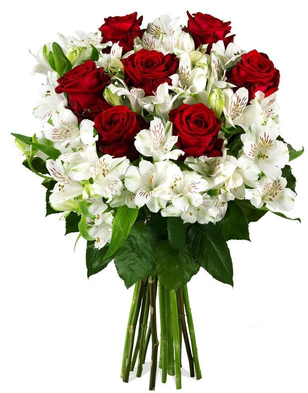 Ich liebe dich Gloria Classic Blumenstrauß mit 7 roten Red Naomi Rosen + Alstromerien für 17,90€