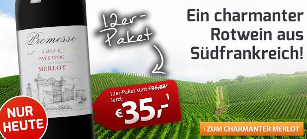 Merlot Pays 12 Flaschen Promesse Merlot Pays dOc Rotwein für 41,50€