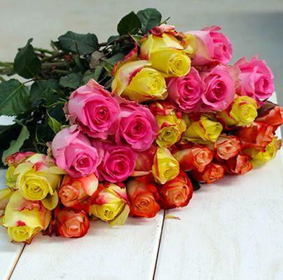 30 bunte Rosen in Überraschungsfarben für 20,89€