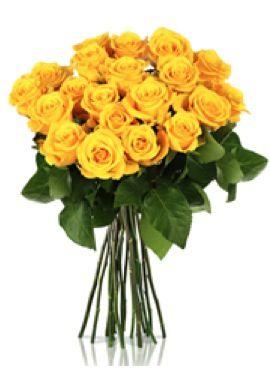 20 gelbe Moonwalk Rosen für 16,90€ inkl. Versand