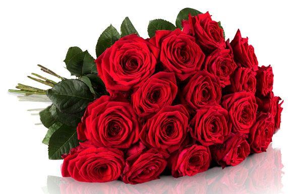 Red Naomi Rosen Miflora Blumenstrauß   20 Red Naomi Rosen für 18,90€