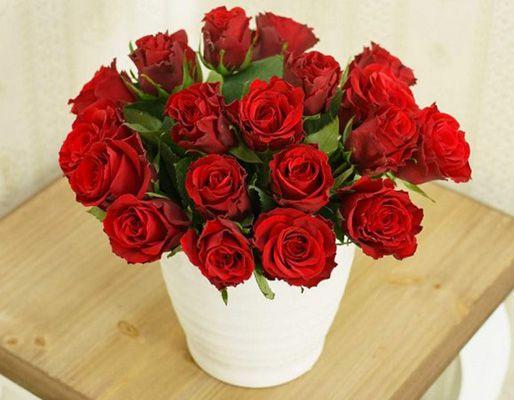 20 rote Rosen mit ca. 50cm Länge für 16,29€
