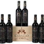 6 Flaschen Caballo d'Oro Gran Reserva Rotwein für 35,94€ – Jahrgang 2006!