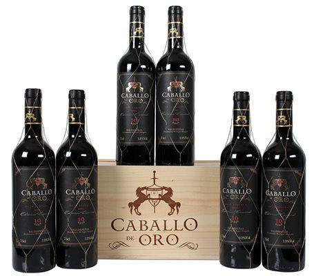 6 Flaschen Caballo dOro Gran Reserva Rotwein für 35,94€   Jahrgang 2006!