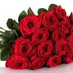 Miflora Blumenstrauß – 20 Red Naomi Rosen für 18,90€