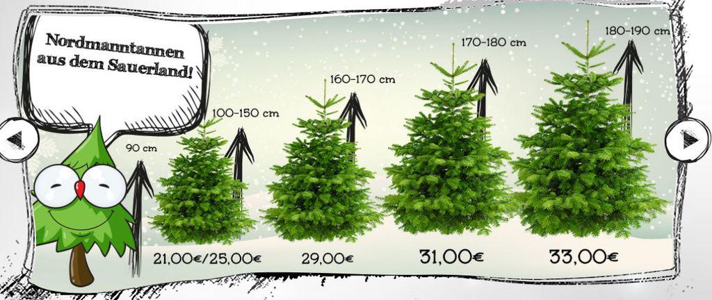Premium Weihnachtsbäume: Nach Hause liefern lassen mit (Wunschdatum)  20% Exclusiv Gutschein