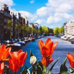 3 Tage Amsterdam im 4* Dorint Hotel mit Frühstück ab 79€ p.P.