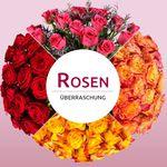 Miflora Rosenüberraschung: 28 Rosen div. Farben für 19,98€