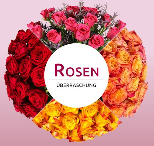 Miflora Rosenüberraschung: 25 28 Rosen für 14,90€