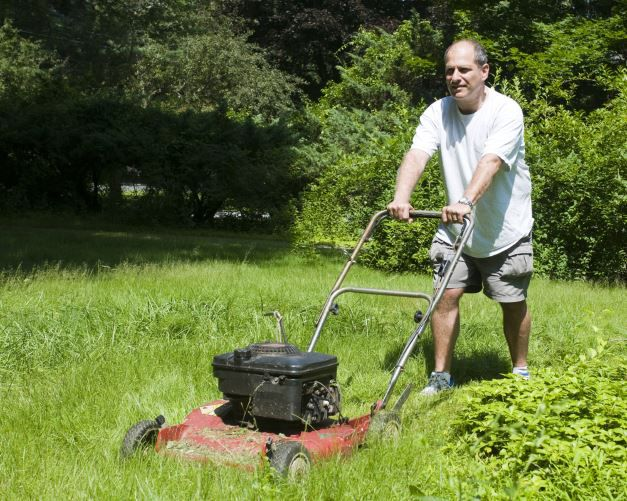 Arbeit mit einem Rasenmaeher Ratgeber Rasenmäher Roboter: Welchen Mähroboter sollte ich kaufen?