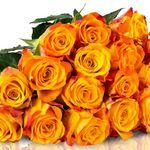 25 Orange-Gelbe Rosen für 20,90€