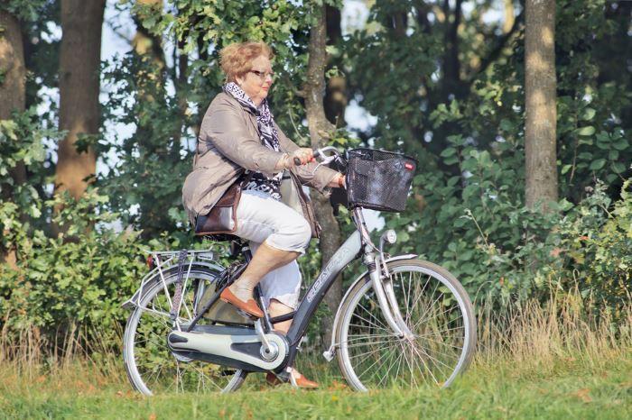 Citybikes Der große E Bike Ratgeber