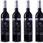 6 Flaschen Casa Safra Terra Alta DO Gran Reserva für nur 28,89€