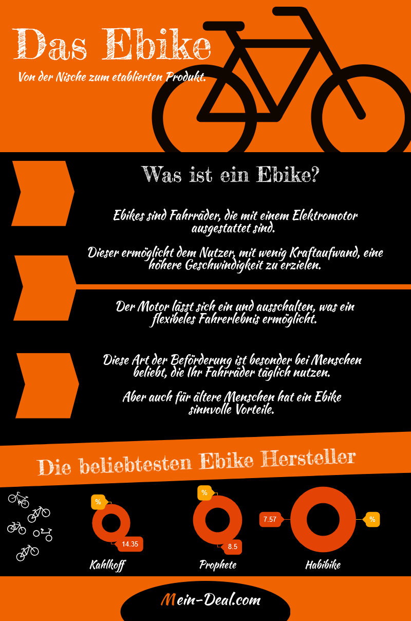 Infografik Das EBike Der große E Bike Ratgeber