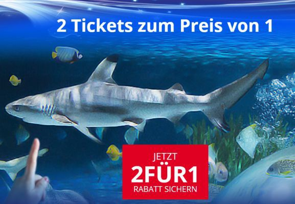 Merlin 2für1 Merlin 2 für 1 Ticket zum ausdrucken   Legoland, Sea Life, Madame Tussauds, Heidepark