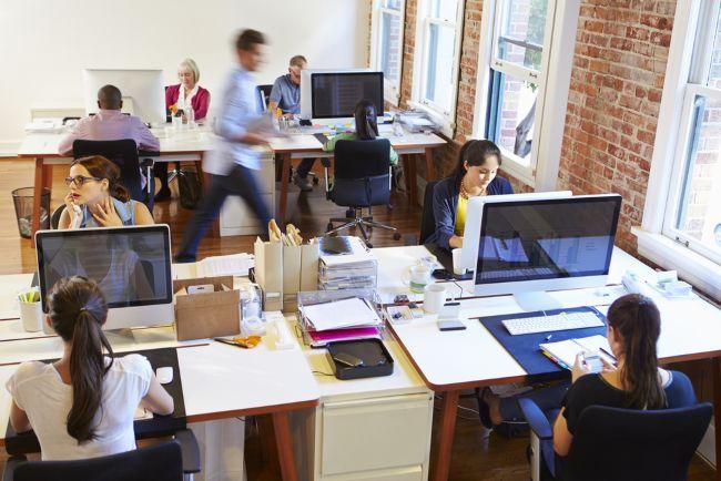Reges Leben im Büro Kaufmännische Berufe: Der etwas andere Leitfaden