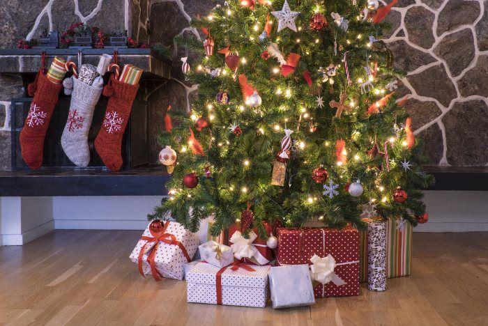 Weihnachtsbaum Für jeden Anlass das passende Geschenk – der große Ratgeber