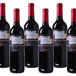 18 Flaschen Bodegas Vinedos Contralto Calle Principal Rotwein für 54,90€