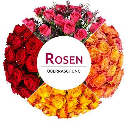 Rosen Ueberraschung