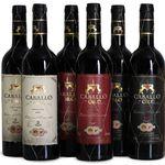 6 Flaschen Caballo de Oro Rotwein in hübscher Holzkiste für 44,94€