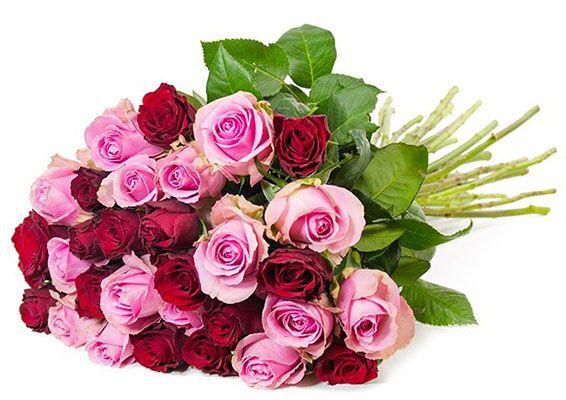 Rosenstrauß Lovely