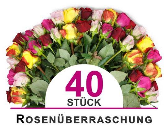 Bildschirmfoto 2016 08 01 um 08.48.36 40 bunte Rosen mit Überraschungsfarbe für 23,94€ inkl. VSK