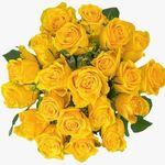 24 gelbe Rosen für 18,94€ inkl. Versand