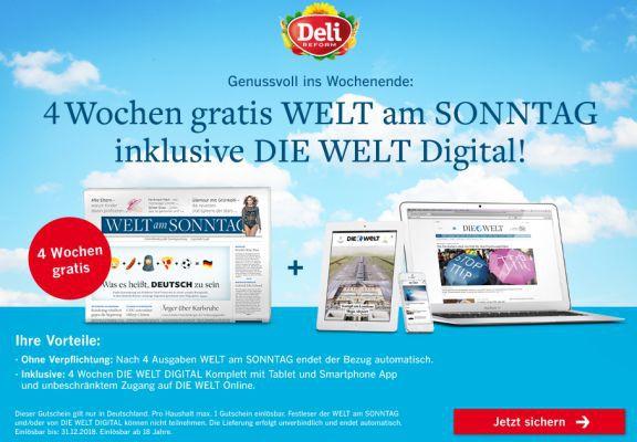 Welt am Sonntag 4 Wochen Welt am Sonntag inkl. Die Welt digital gratis lesen