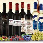16 Jahre Ebrosia: 10 Flaschen Wein aus versch. Ländern für 39,90€
