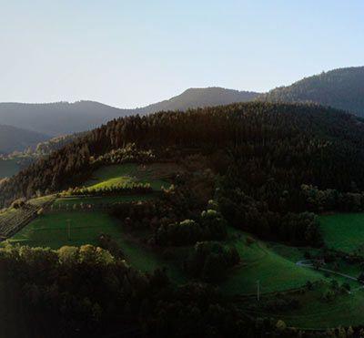 schwarzwald-thumb