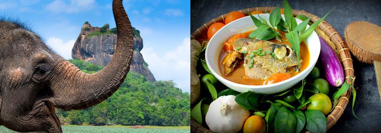 14   15 ÜN Rundreise durch Sri Lanka inkl. Flug, Hotels & mind. Frühstück ab 1.279€ p.P.