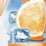 2er Pack FROSCH OASE Icy Orange Raumerfrischer für 11,95€
