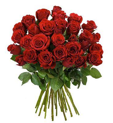44 rote Rosen mit 50cm Länge für 24,98€ inkl. VSK