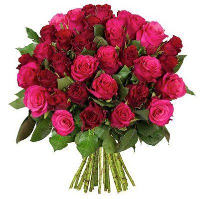 Rosenstrauß Lovely mit 41 Rosen für 23,94€ inkl. Versand