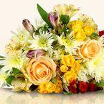 Miflora Strauß No. 5 für nur 23,65€ dank 33% auf alle nicht reduzierten Blumensträuße